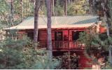 Custom Cabin in Aska Adventure Area! Trickling Branch adjacent can be enjoyed from covered porch and separate screen porch complete with hot tub(new cover). Enter main level featuring volume ceilings