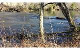Trophy Trout Fishing on the Toccoa River! Lot 7 is 2.3 acres and Lot 8 is 2.4 acres, with each lot having 150 feet of GREAT RIVER FRONTAGE and within 5 miles of Blue Ridge. Lots are below the dam and