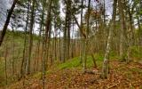 ^Gorgeous Building Lot^ located in the heart of the Aska Adventure Area in Browns Cove a gated upscale lake front community w/ scenic short range mountain vistas in the distance. Property is within wa