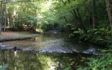 This 3.4 acres on Fightingtown Creek with just Under 300 of Frontage is the perfect place to build your mountain dream get-a-way! Hard not to covet some of the Best Trout Fishing in all of North Georg