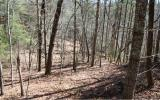Nice laying lot in the heart of the Aska Adventure area. Everything for an outdoor lover with hundreds of acres of USFS land in your back yard with anything from hiking and biking trails, canoeing on