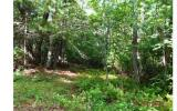 6.4 Acres joining USFS. Very gentle wooded property, no restrictions. Fronts both Duck Gap Road and Forest Rd 265. Very private location