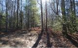 Gentle lot in quiet lake community. Nicely wooded and minutes away from Poteet Creeks Public Boat Ramp and Recreation area on Lake Nottely. Paved roads, public water and underground utilities. Conveni