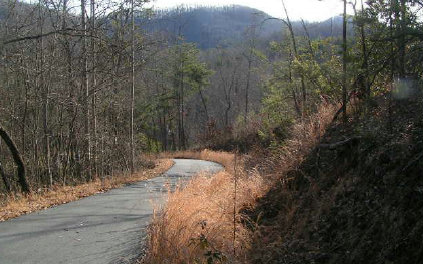 253000 Hayesville Vacant Lot