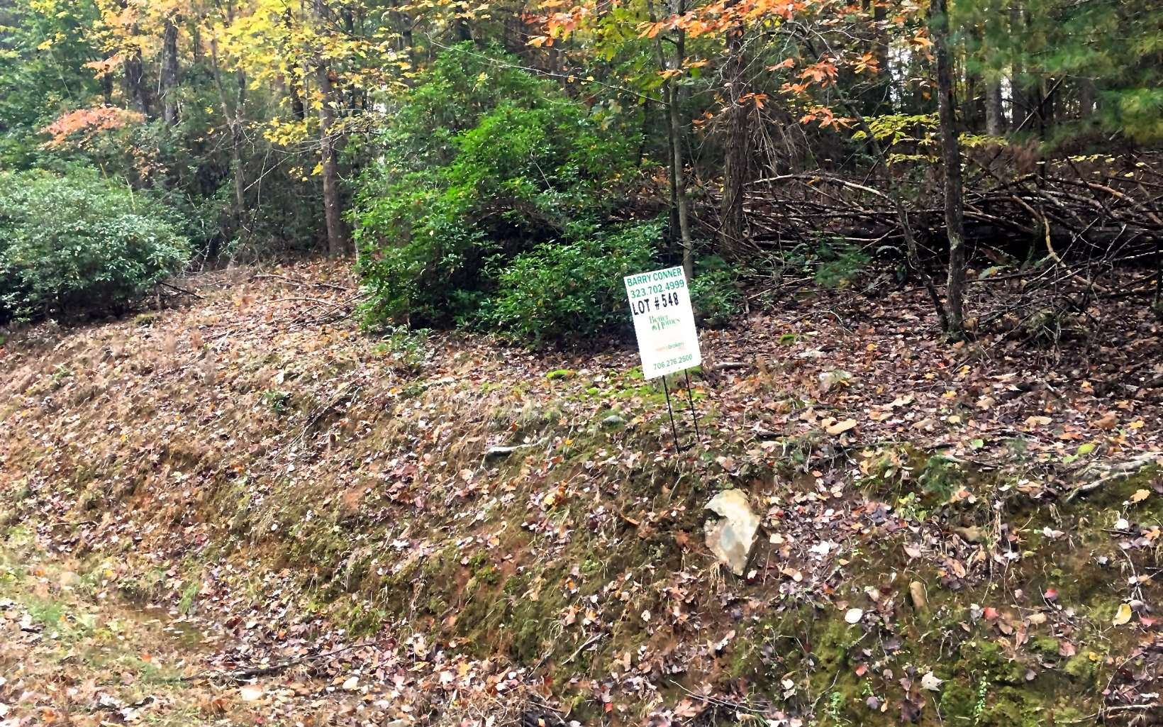 297100 Ellijay Vacant Lot