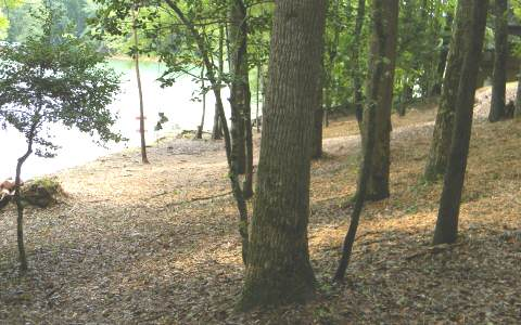268402 Hayesville Lake Front Lot