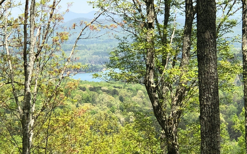 277602 Blairsville Vacant Lot
