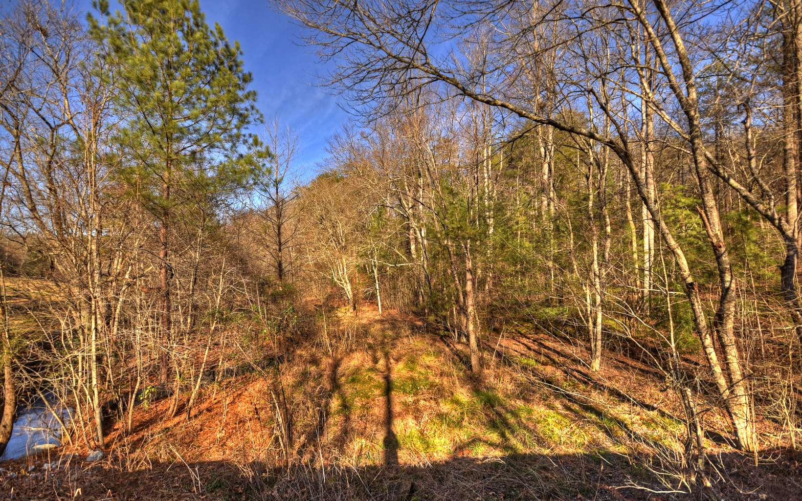 284602 Blue Ridge Vacant Lot