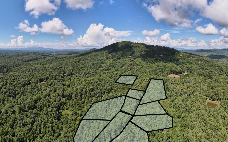 299404 Mineral Bluff