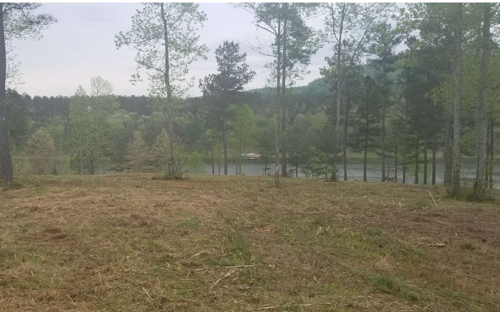277705 Blairsville Lake Front Lot