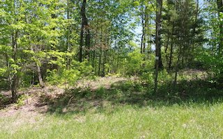 279508 Blairsville Vacant Lot