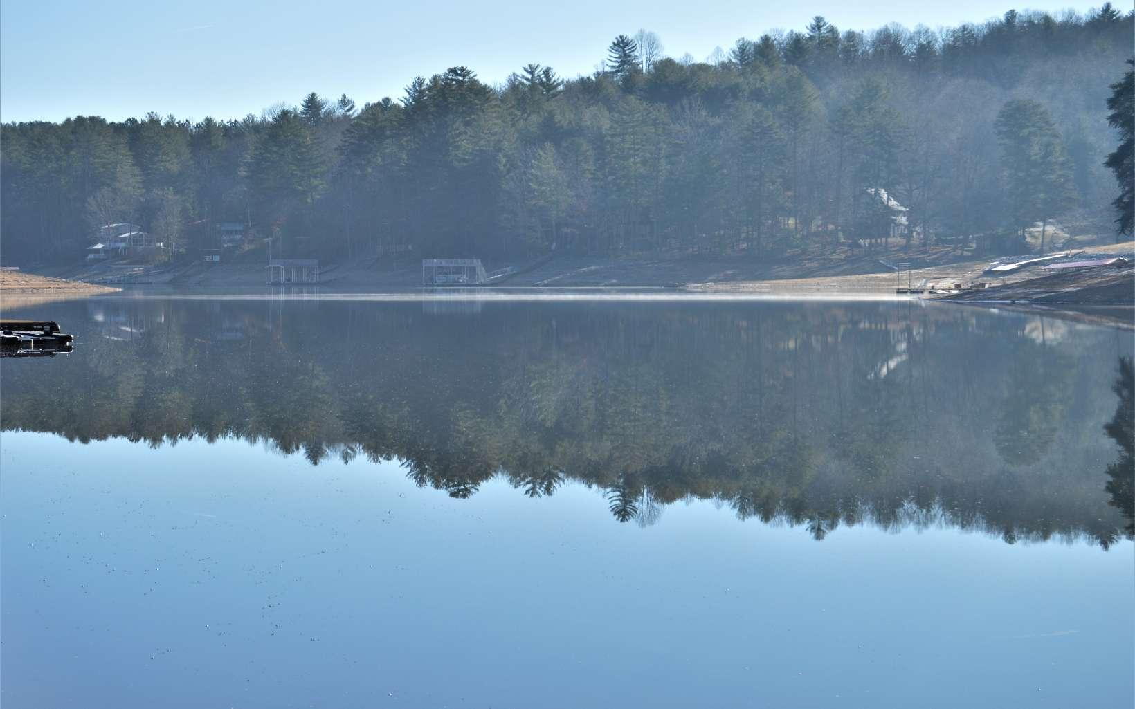 294008 Blairsville Lake Front Lot