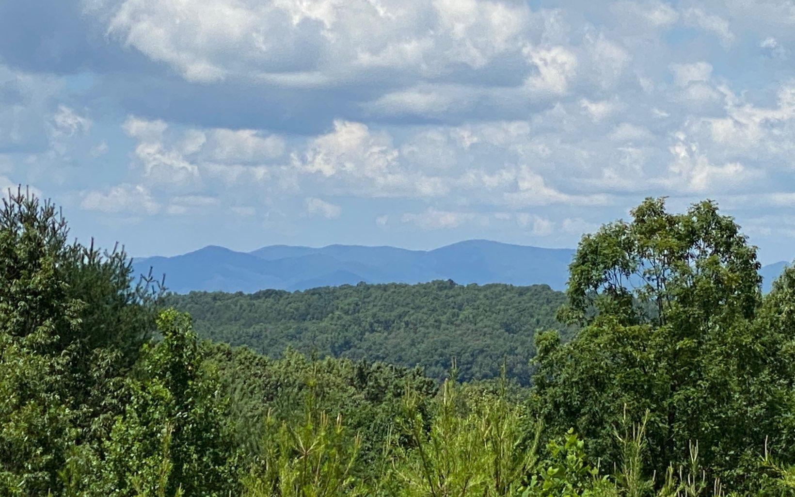 299408 Blue Ridge