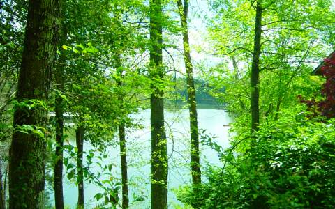 228809 Blairsville Lake Front Lot