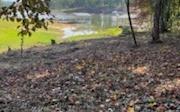 311309 Blairsville Lake Front Lot