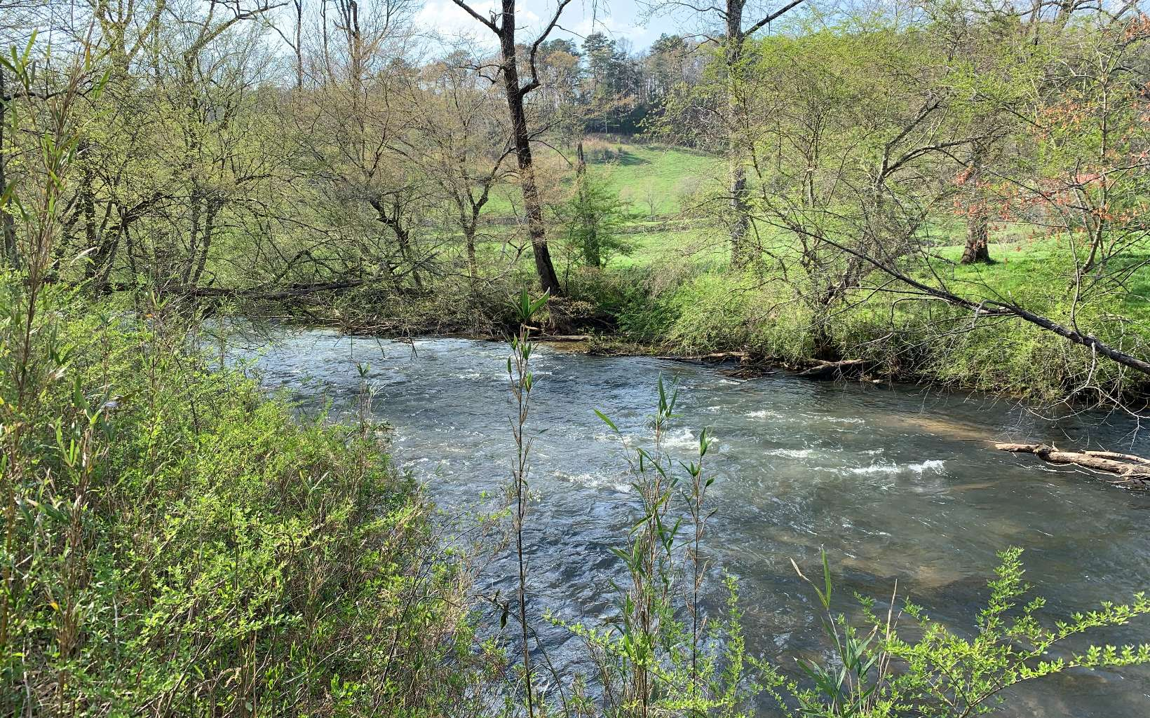 305911 Cherry Log River Front