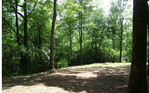 175612 Hayesville Vacant Lot