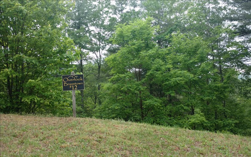 267212 Brasstown Vacant Lot