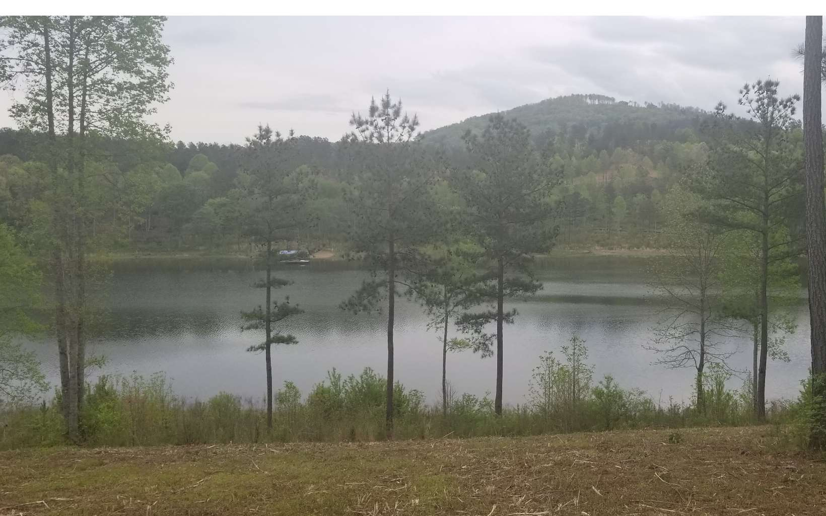 277712 Blairsville Lake Front Lot