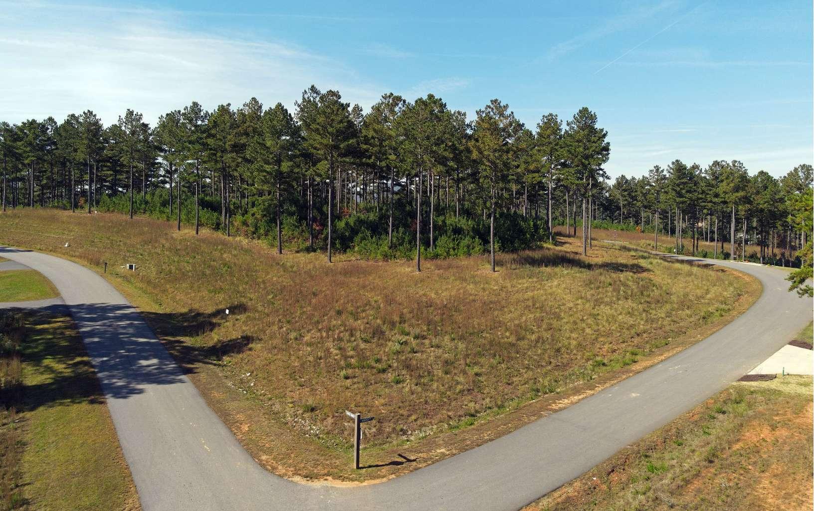 301612 Blairsville Lake Access Lot