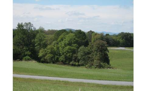 204413 Blairsville Vacant Lot