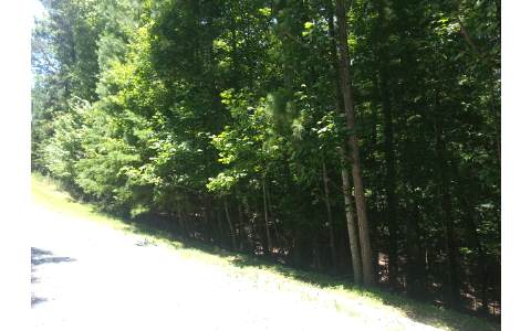 240313 Ellijay Vacant Lot