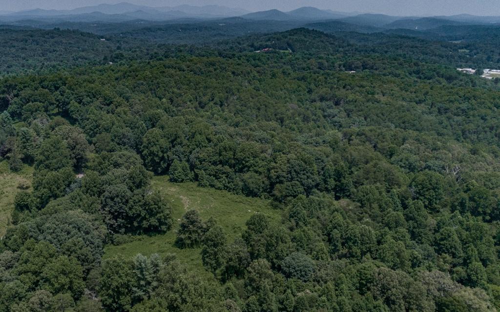 309013 Blue Ridge