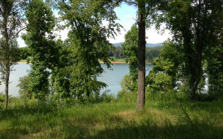 233914 Blairsville Lake Front Lot
