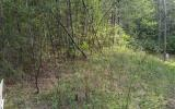 281514 Turtletown Vacant Lot