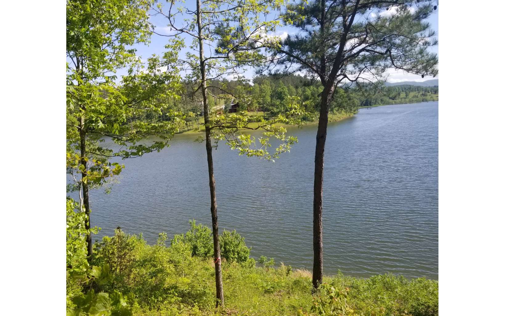 278415 Blairsville Lake Front Lot