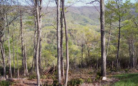 228516 Hayesville River Access Lot