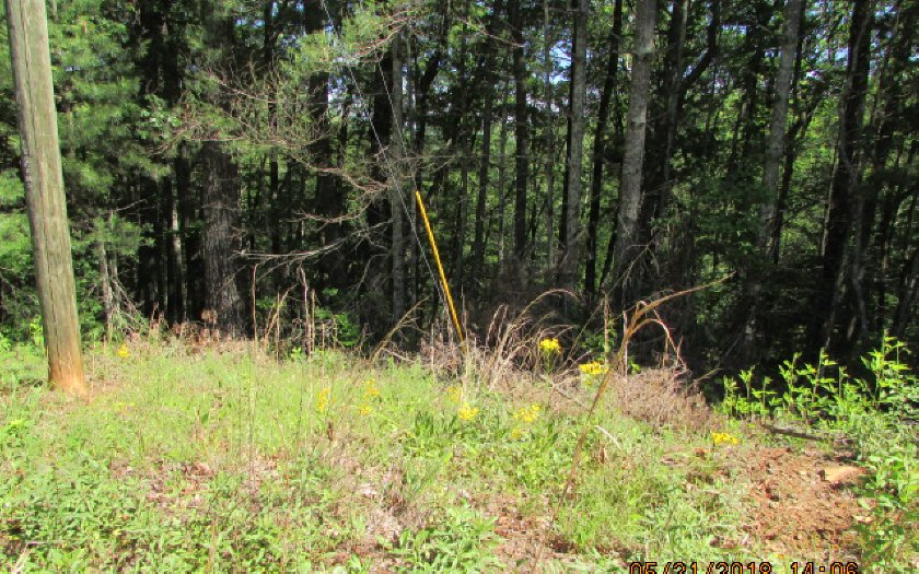 278216 Ellijay Vacant Lot