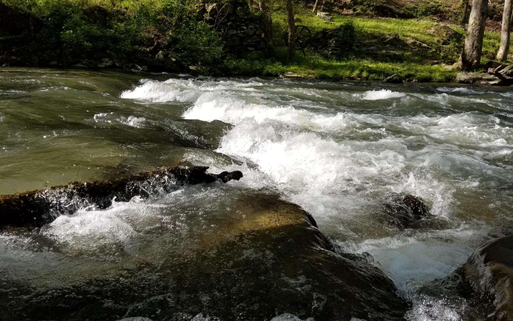 277617 Ellijay River Front