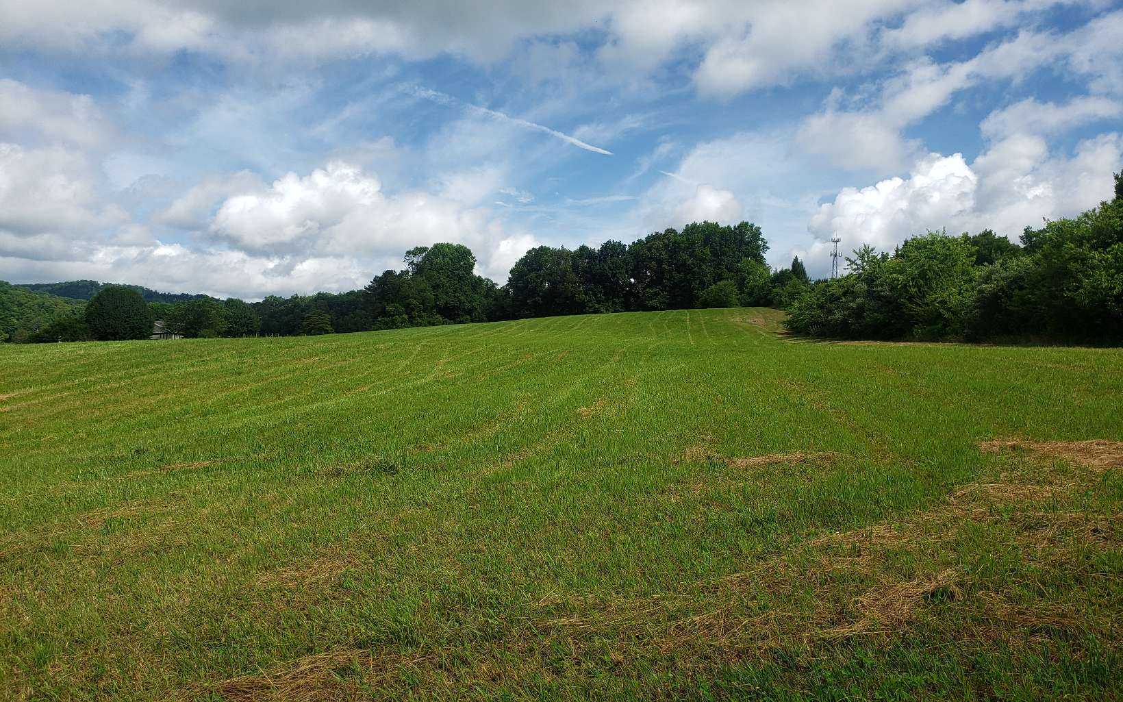 309017 Hayesville Commercial