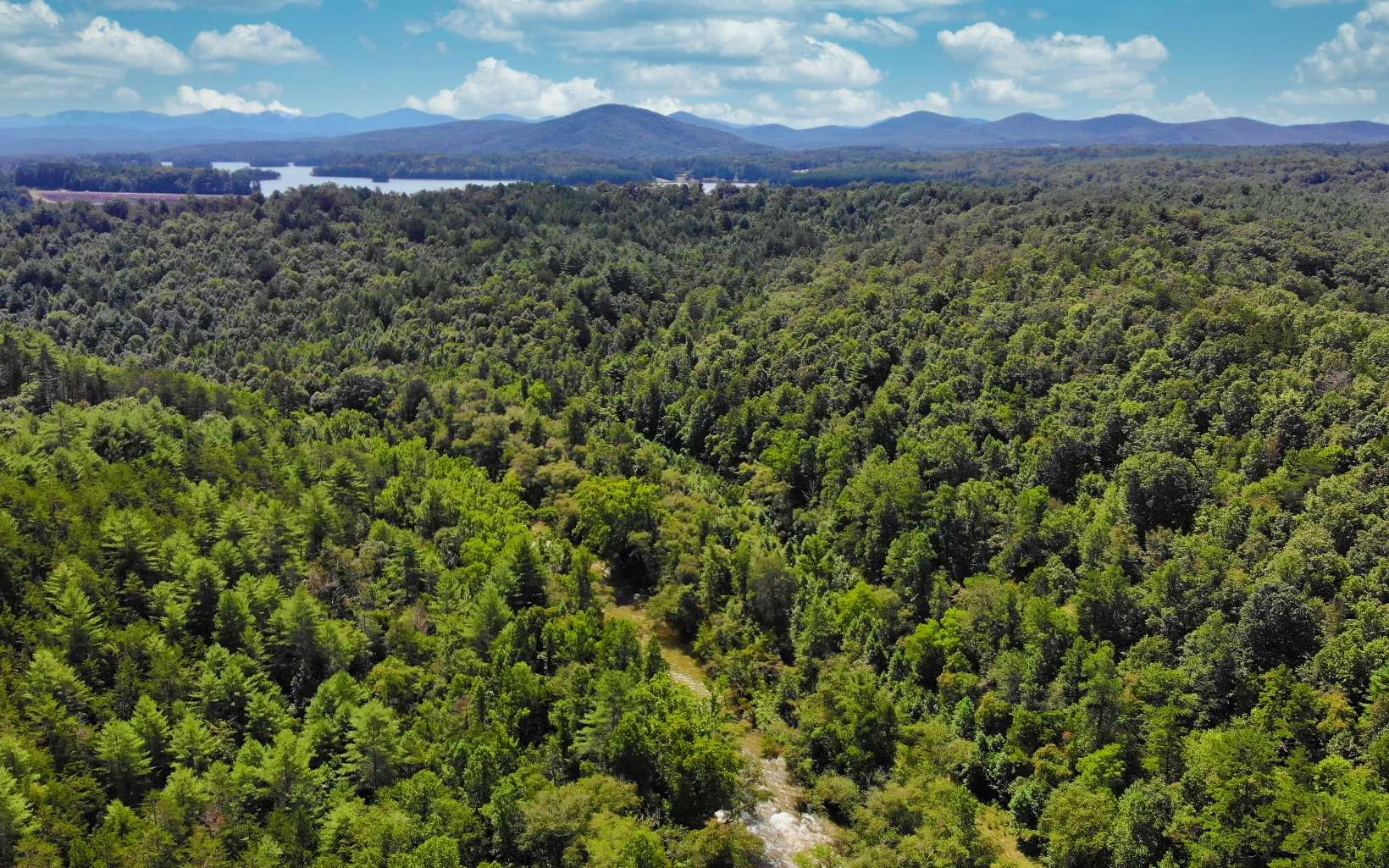 310617 Blairsville River Front