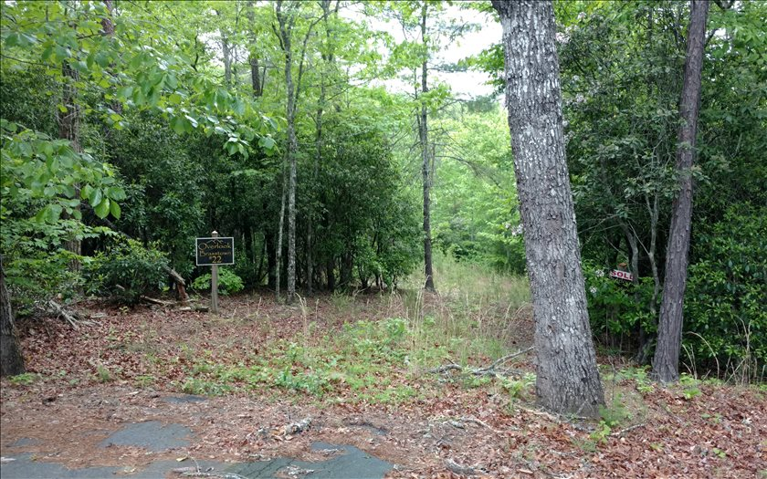 267218 Brasstown Vacant Lot
