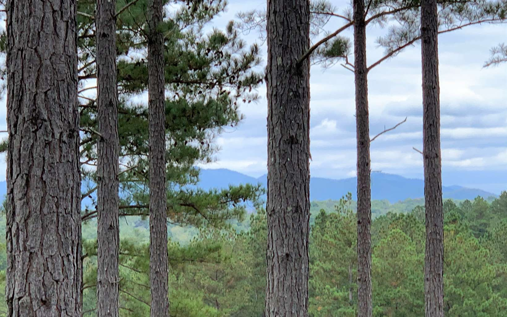 301618 Blairsville Lake Access Lot