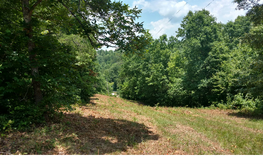 256820 Brasstown Vacant Lot