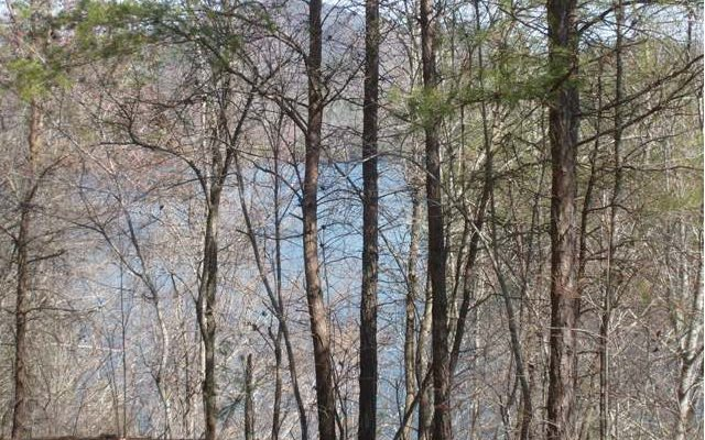 271922 Murphy Lake Access Lot