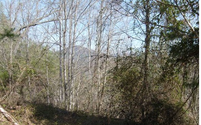 271922  Lake Access Lot