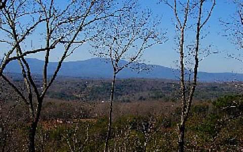 285922 Mineral Bluff
