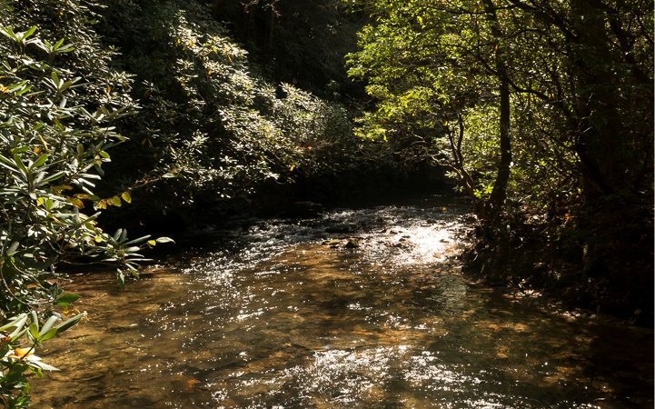 296622 Ellijay River Access Lot