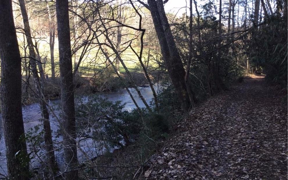 308223 Ellijay River Front