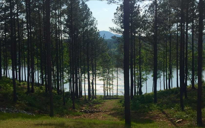 272724 Blairsville Lake Front Lot