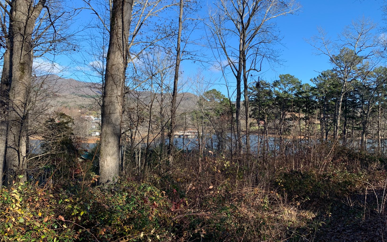 304625 Hiawassee Lake Front Lot