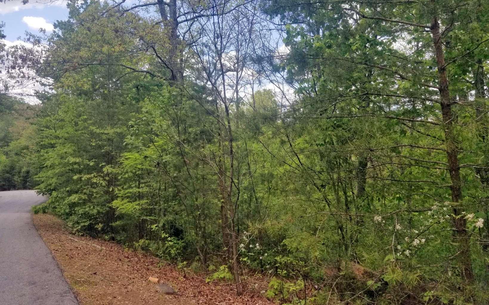 307226 Brasstown River Access Lot