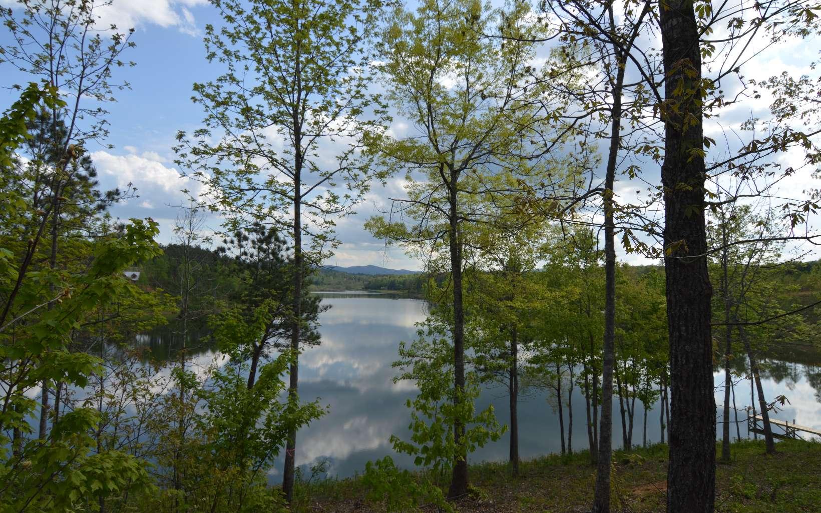 278127  Lake Front Lot