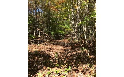 275229 Brasstown Vacant Lot