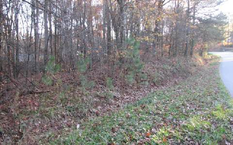 237030 Ellijay Vacant Lot