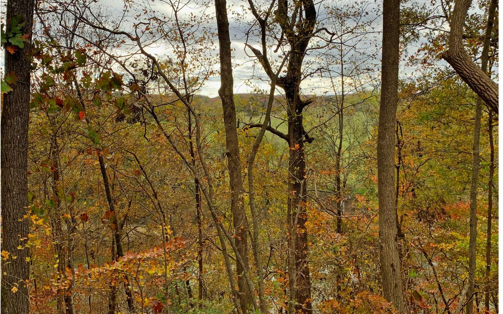 300532 Calhoun River Front